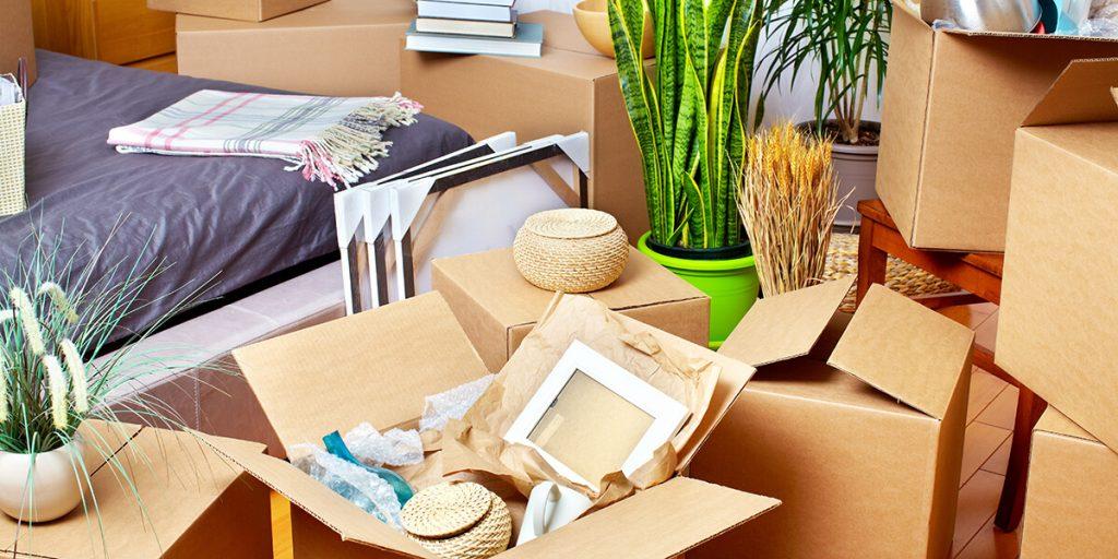 downsizing house accumulation